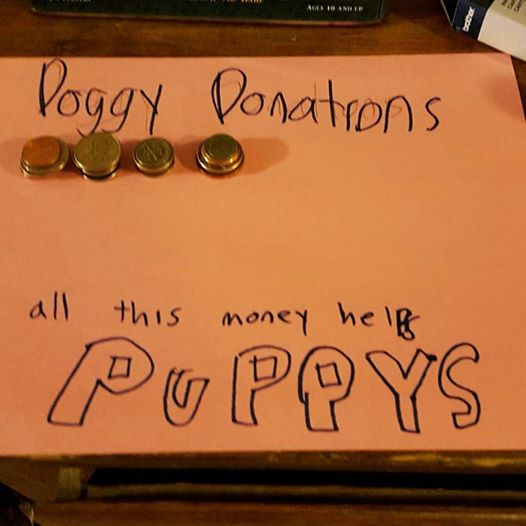 Doggy_Donations